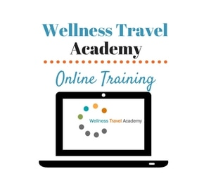 Wellness Travel Academy